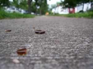 Broken glass in front of 185 Elmerston